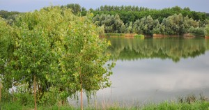 lacul-varlaam